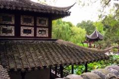 Praxis-Traditionelle-chinesische-Medizin-Koeln-Sabine-Schmitz-089-roofs