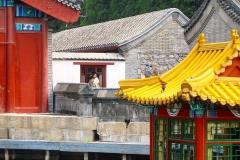 Praxis-Traditionelle-chinesische-Medizin-Koeln-Sabine-Schmitz-090-roofs