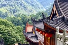 Praxis-Traditionelle-chinesische-Medizin-Koeln-Sabine-Schmitz-092-roofs