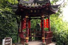 Praxis-Traditionelle-chinesische-Medizin-Koeln-Sabine-Schmitz-096-pavillions