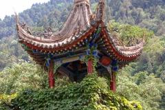Praxis-Traditionelle-chinesische-Medizin-Koeln-Sabine-Schmitz-097-pavillions