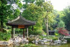 Praxis-Traditionelle-chinesische-Medizin-Koeln-Sabine-Schmitz-098-pavillions