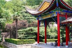Praxis-Traditionelle-chinesische-Medizin-Koeln-Sabine-Schmitz-099-pavillions