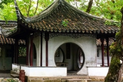 Praxis-Traditionelle-chinesische-Medizin-Koeln-Sabine-Schmitz-Mondtuer-044