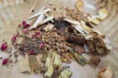 Praxis-Traditionelle-chinesische-Medizin-Koeln-Sabine-Schmitz-kraeuter-053