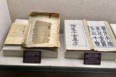 Praxis-Traditionelle-chinesische-Medizin-Koeln-Sabine-Schmitz-museum-068