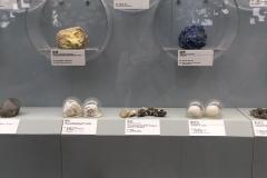 Praxis-Traditionelle-chinesische-Medizin-Koeln-Sabine-Schmitz-museum-071